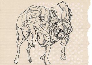 Magdalena Sawicka : Two drawings