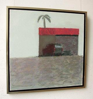 Radek Zielonka - Property with a palm