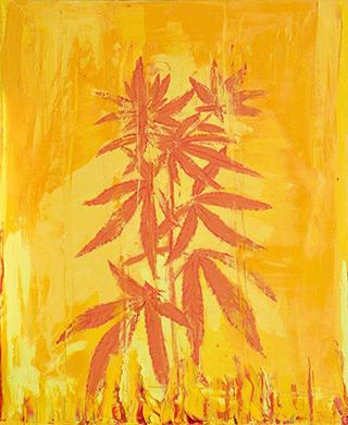 Jacek Łydżba : Marijuana III : Oil on Canvas