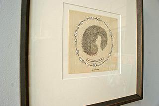 Magdalena Sawicka : Corpus celare + corpus dobium : Ink on paper