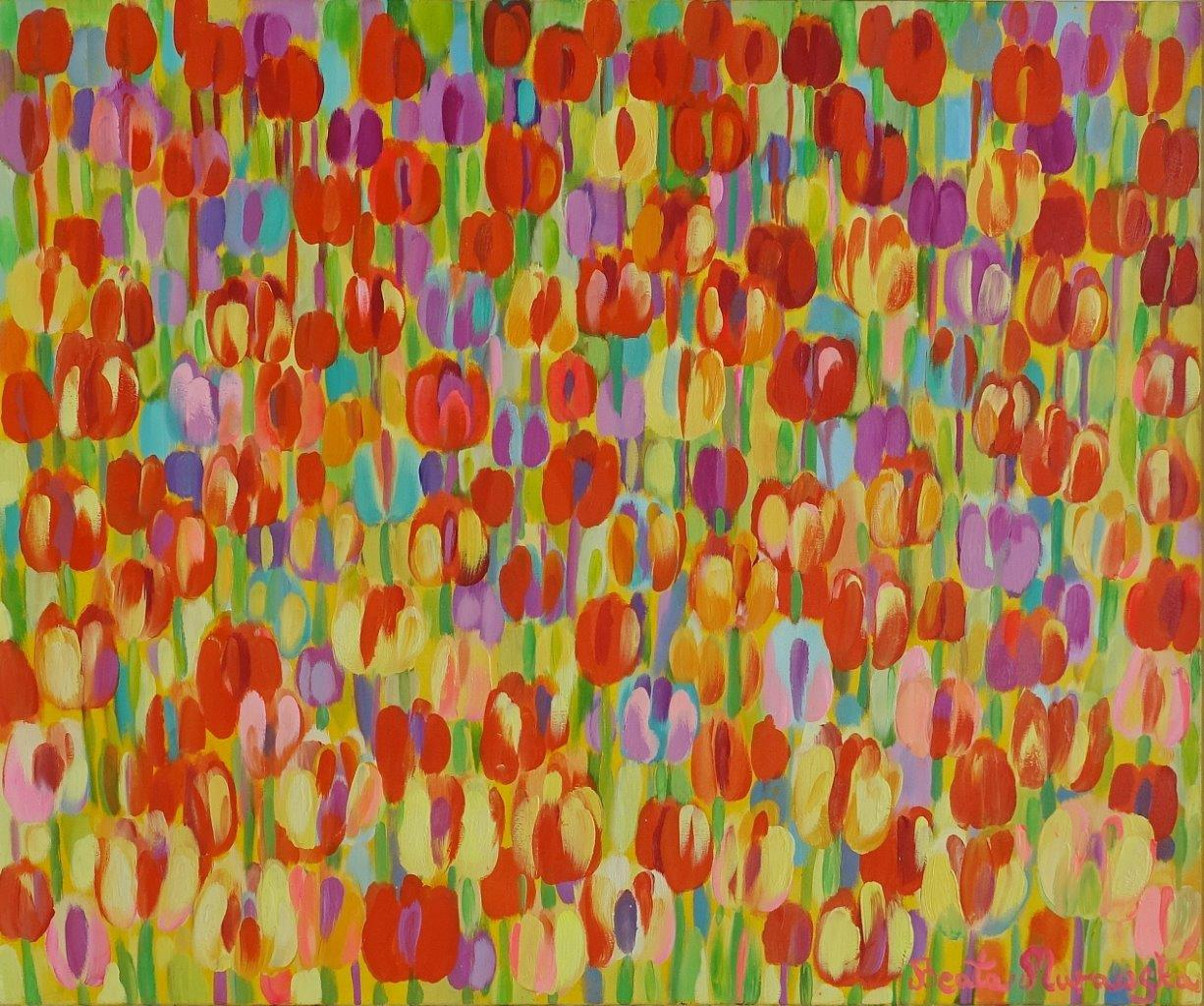 Beata Murawska : Spring field of tulips