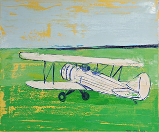 Jacek Łydżba : White plane on the grass : Oil on Canvas
