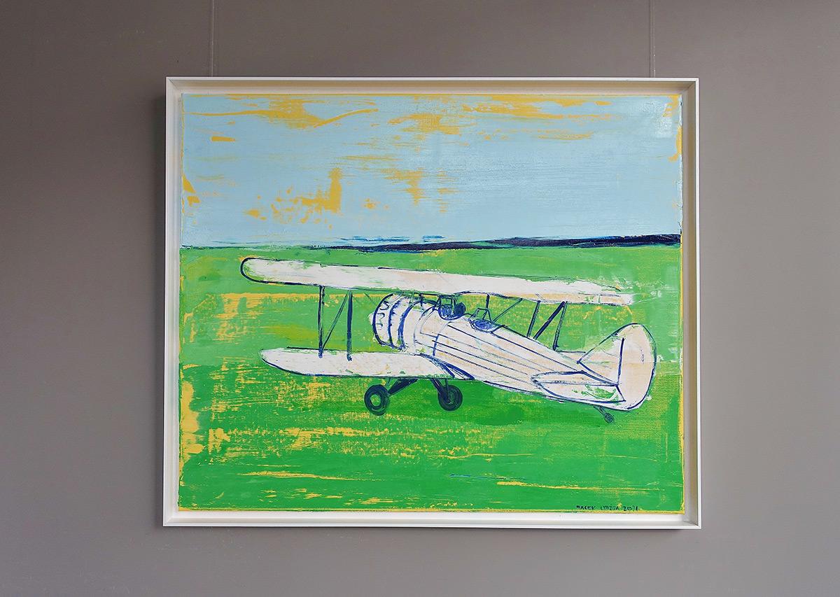 Jacek Łydżba : White plane on the grass